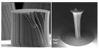 Densified Carbon Nanotube