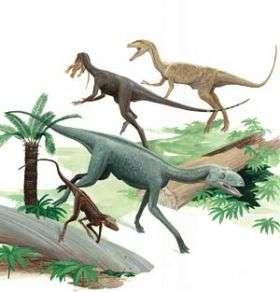 Dinosaurs, Non-dinosaur Ancestors Coexisted