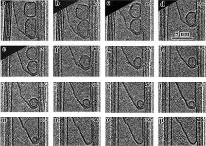 Buckyball birth observed by Sandia nanotech researcher