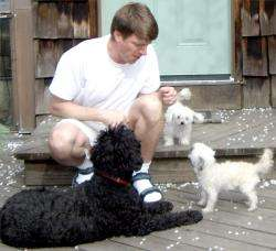 Ancient Genetic Material Keeps Pups Pint-Sized