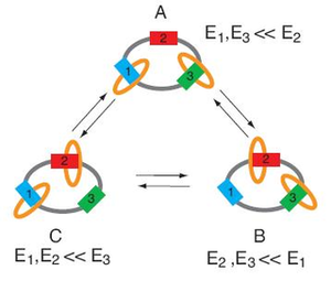'Kind and Gentle' Molecular Machine Could Operate at Near-Equilibrium