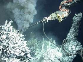 New Undersea Vent Suggests Snake-Headed Mythology