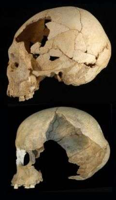 The Emerging Fate Of The Neandertals