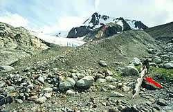 Western Canada's Glaciers Hit 7000-Year Low