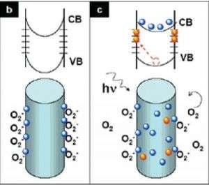 Why nanowires make great photodetectors