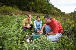 Researchers examine role of soil patterns in dam restoration
