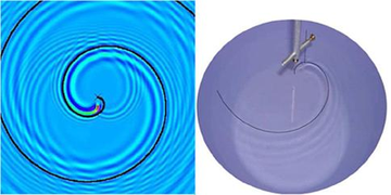 Weird wave behavior may explain why the whirligig walks in circles