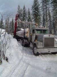 Compared to all commercial carriers, log truckers have better safety record