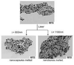 Gold nanoparticles for controlled drug delivery