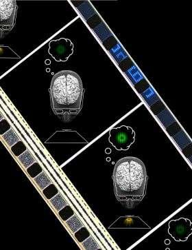 'Mind's eye' influences visual perception