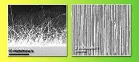 Nanowire Bad-Hair Good-Hair