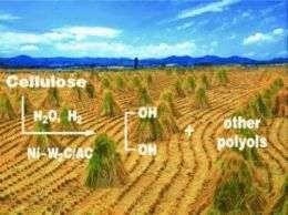 New Ways to Use Biomass