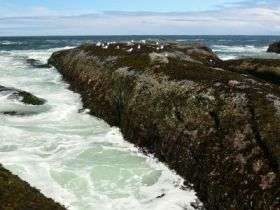 Ocean growing more acidic faster than once thought
