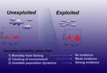 Schematic Outlines Variability on Exploited and Unexploited