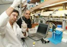 Technology uses live cells to detect food-borne pathogens, toxins
