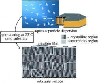 Thin Polymer Film