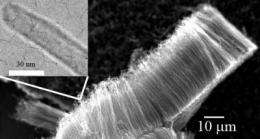Nanotube defects equal better energy and storage systems