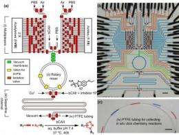 New microchip technology performs 1,000 chemical reactions at once