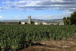 Study highlights massive imbalances in global fertilizer use