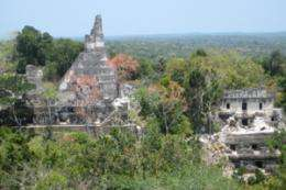 Ancient Maya Practiced Forest Conservation -- 3,000 Years Ago