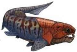 Fossilised pregnant fish was one of the first animals to have sex