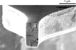 IBM Cantilever end with virus sample