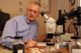Paleontologist reflects on Darwinian connections