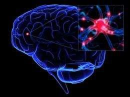 Researchers Develop Wireless Method of Brain Stimulation