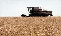 A farmer harvests his soybean crop near Ottawa, Illinois