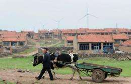 A farmer walks with his cow past rural housing in the shadow of a wind farm north of Beijing