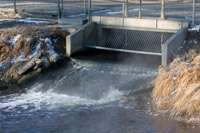 Bacteria create aquatic superbugs in waste treatment plants