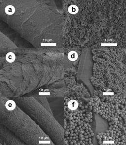 Chemistry makes the natural 'wonder fabric' -- wool -- more wonderful