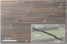 GaAs self-assembled nanowires could make chips smaller and faster