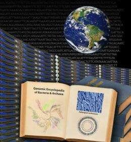 Genomic Encyclopedia of Bacteria and Archaea (GEBA)