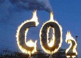 Greenpeace activists burn a symbol of carbon dioxide