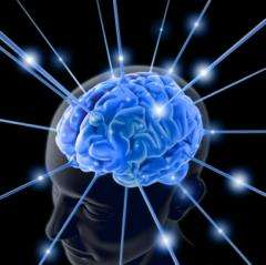 In the Brain, Seven Is A Magic Number