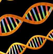 Moles hold the key to melanoma genes
