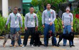 New tactics in Guam rhino beetle invasion