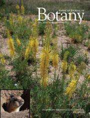Prairie dogs: influencing the accumulation of metals in plants?