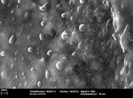 Self-healing surfaces