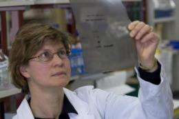 Stem cell 'daughters' lead to breast cancer
