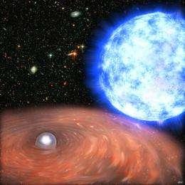 XMM-Newton uncovers a celestial Rosetta stone