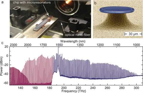 An octave spanning chip-based optical ruler