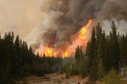 Drying intensifying wildfires, carbon release ninefold, study finds