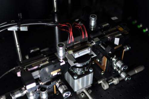 Multi-purpose photonic chip paves the way to programmable quantum processors