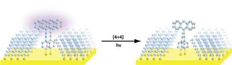 New method for studying molecule reactions a breakthrough in organic chemistry