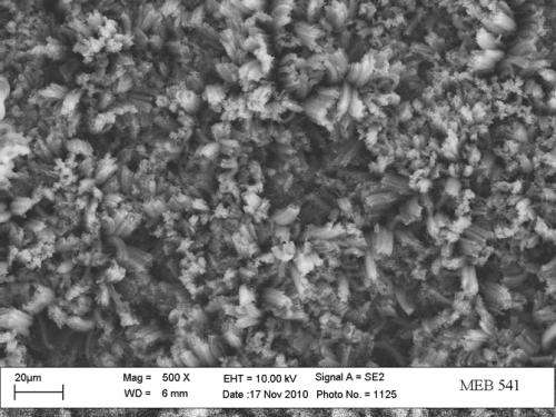 New 'super-black' material absorbs light across multiple wavelength bands