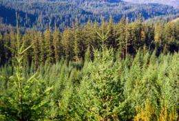Report provides new analysis of carbon accounting, biomass use, and climate benefits