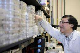Researchers step closer to treatment of virulent hospital infection