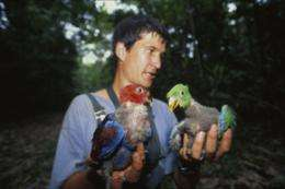 Researchers reveal baby-killer birds
